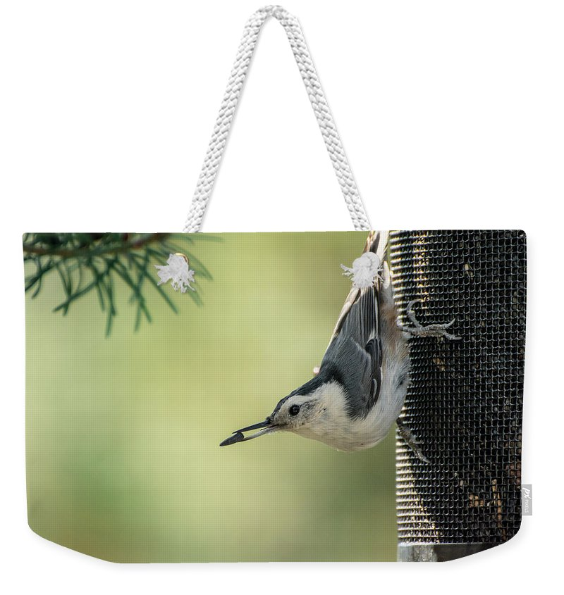 Bird Weekender Tote Bag featuring the photograph White-breasted Nuthatch by Constance Puttkemery