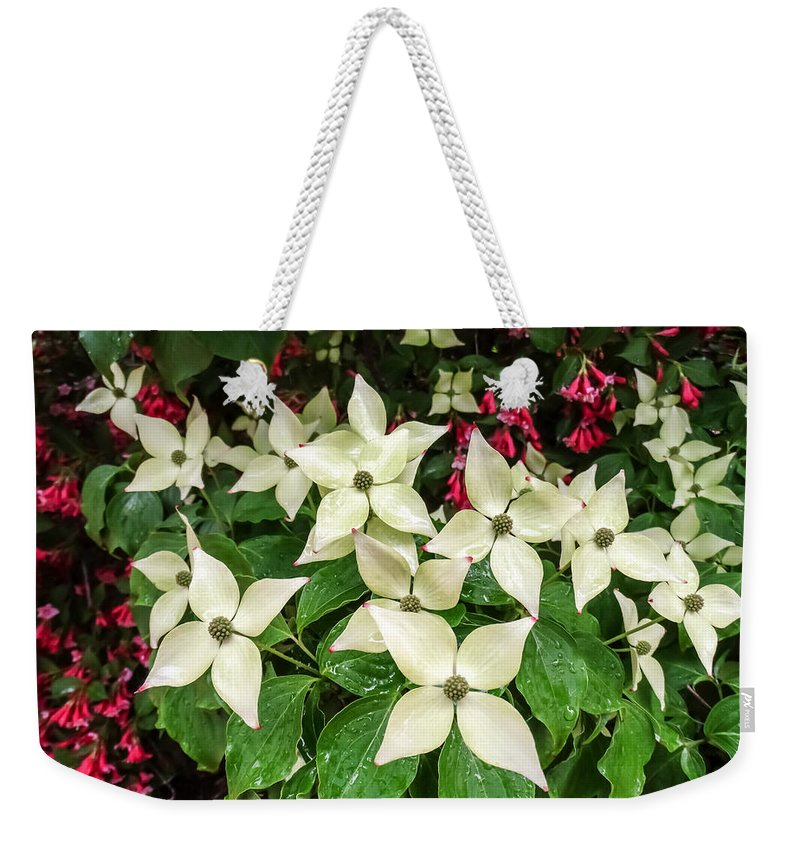 White Bunchberries In The Rain Weekender Tote Bag featuring the photograph White Bunchberries In The Rain by Cynthia Woods