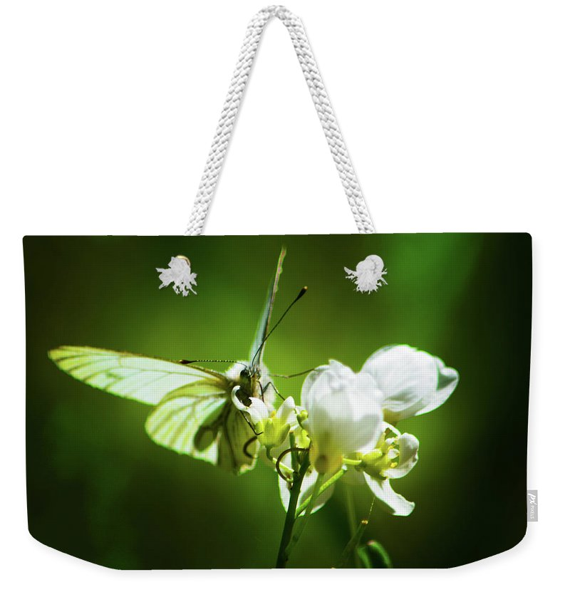 Butterfly Weekender Tote Bag featuring the photograph White Butterfly by Christine Dorfer