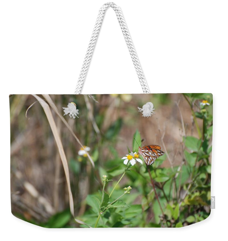 Butterfly Weekender Tote Bag featuring the photograph White Butterfly by Rob Hans