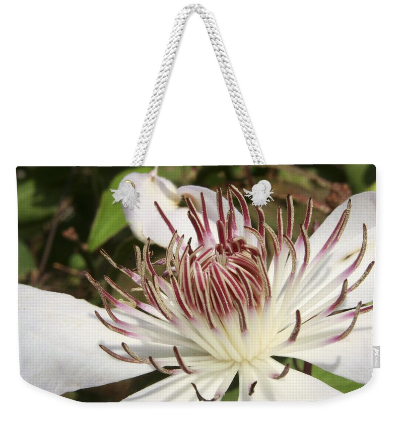 Clematis Weekender Tote Bag featuring the photograph White Clematis Henryi by Margie Wildblood