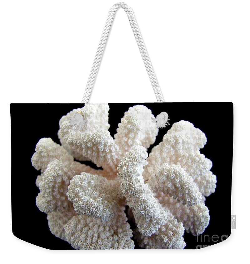 White Weekender Tote Bag featuring the photograph White Coral by Mary Deal