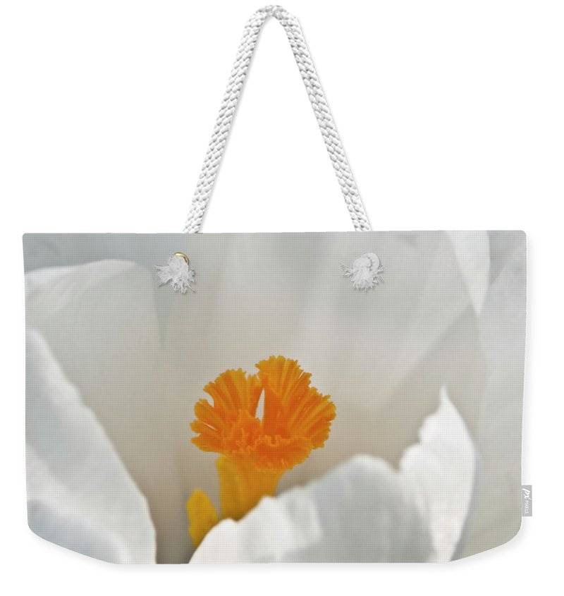 Crocus Flower Weekender Tote Bag featuring the photograph White Crocus by Brian Roscorla