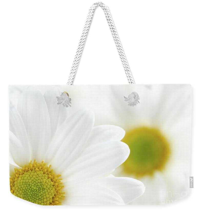 Daisy Weekender Tote Bag featuring the photograph White Daisies by Elena Elisseeva
