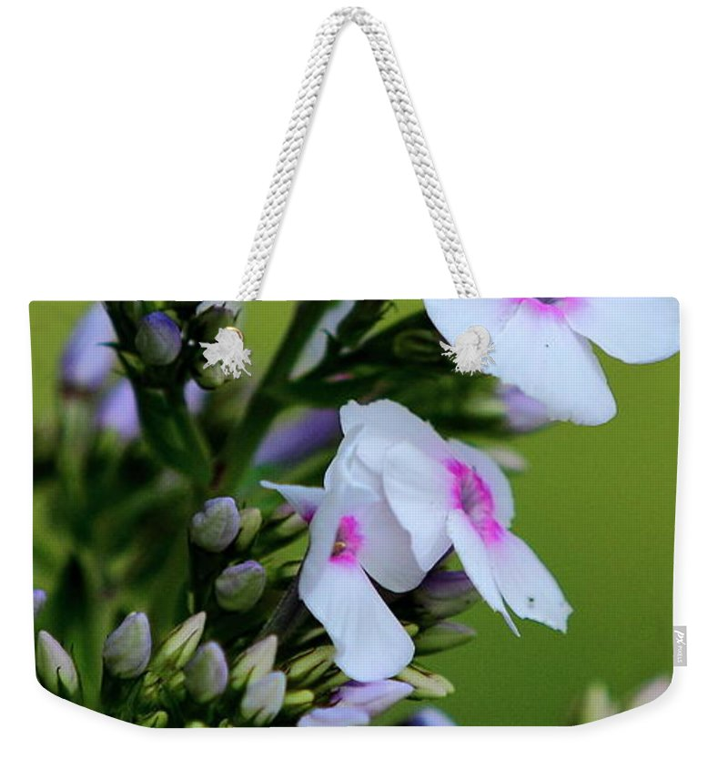 White Flowers Weekender Tote Bag featuring the photograph White Flowers by Brian Manfra