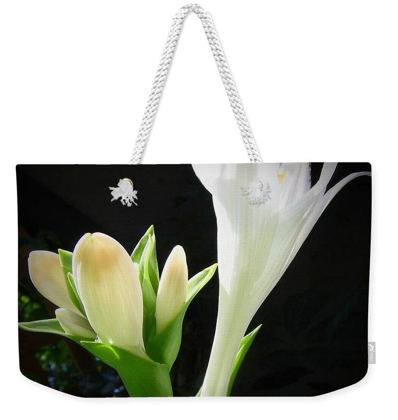 White Weekender Tote Bag featuring the photograph White Hostas Blooming 7 by Maciek Froncisz