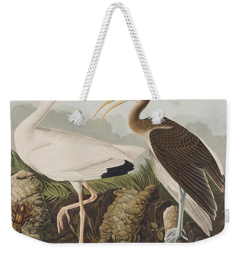 Ibis Weekender Tote Bags