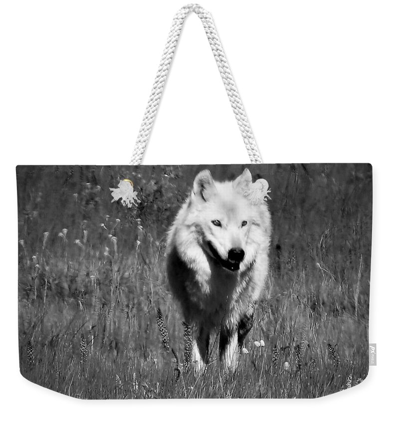 White Lady Weekender Tote Bag featuring the photograph White Lady by Nicole Belvill