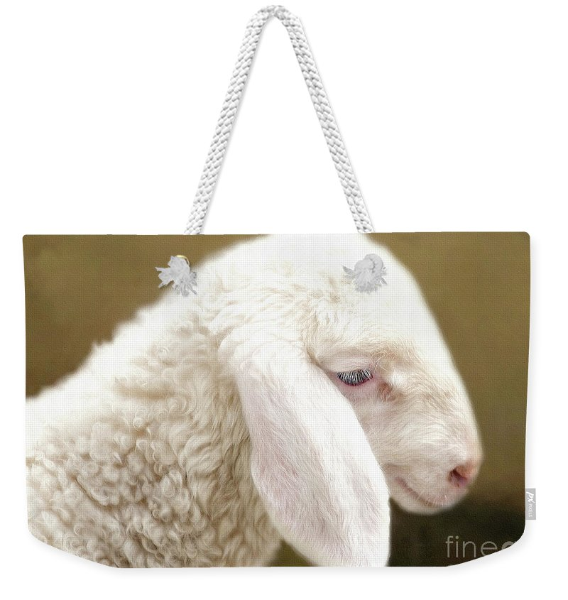 White Lamb Weekender Tote Bag featuring the mixed media White Lashes by KaFra Art