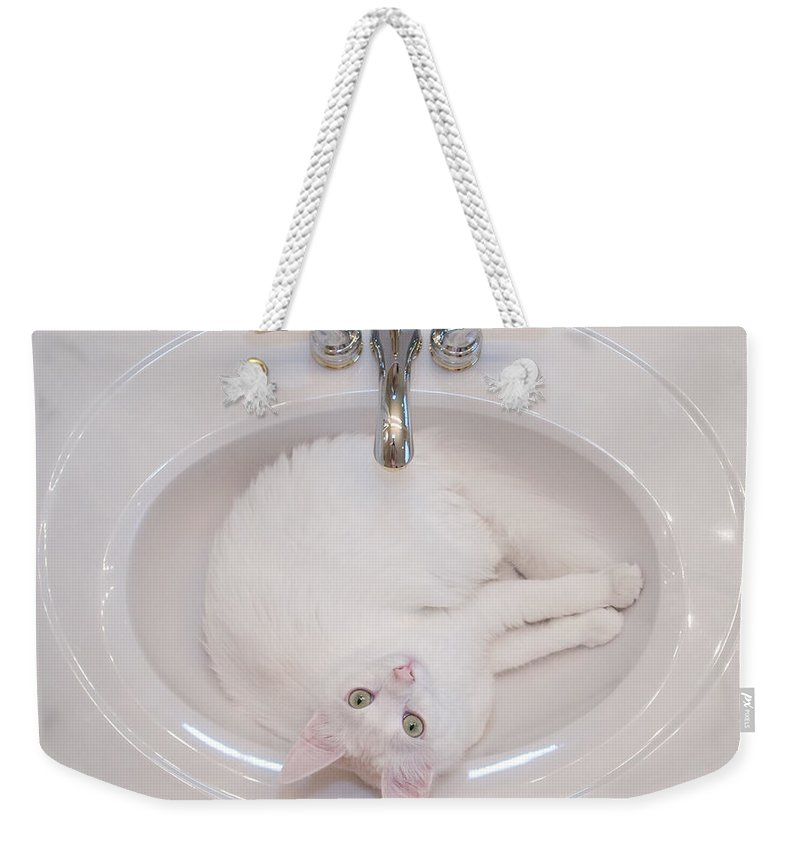 White Weekender Tote Bag featuring the photograph White On White 2 by Julie Niemela