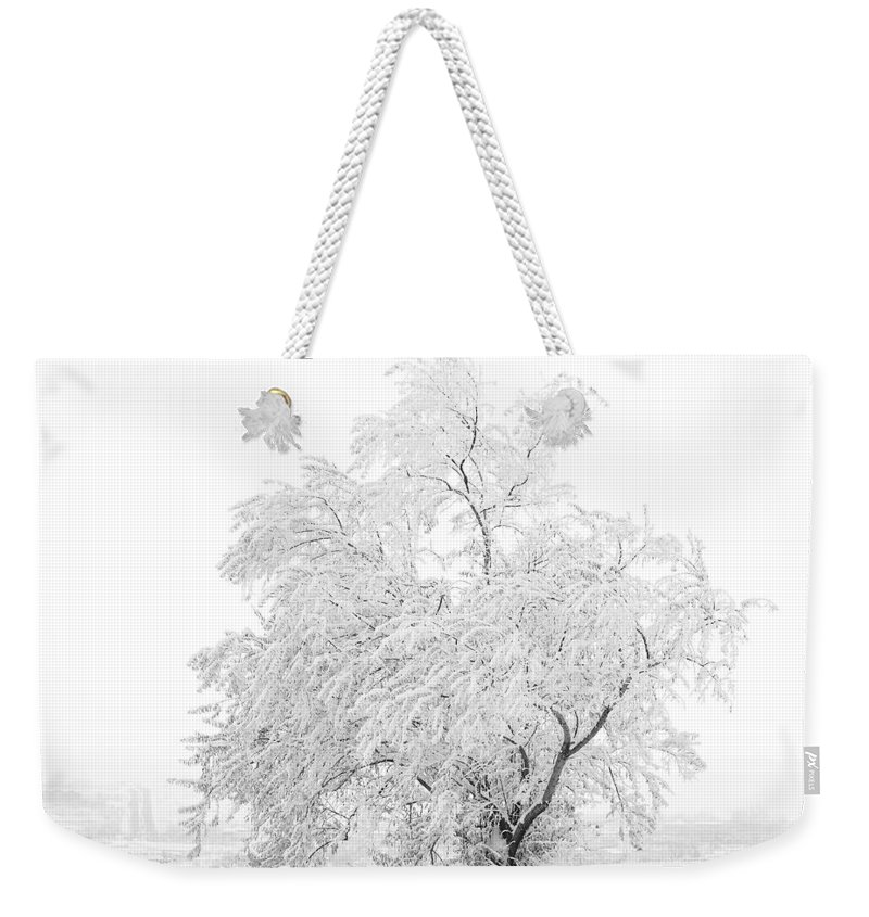 Snow Weekender Tote Bag featuring the photograph White on White by Marilyn Hunt