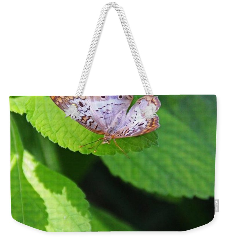 White Peacock Weekender Tote Bag featuring the photograph White Peacock Butterfly II by Michiale Schneider