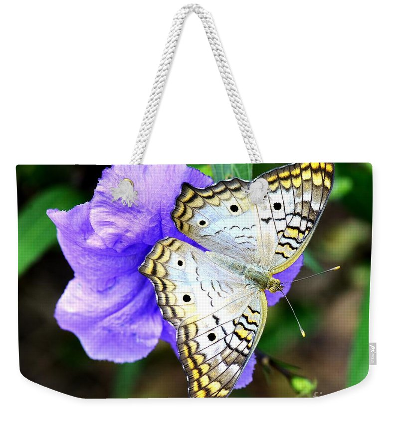 Butterfly Weekender Tote Bag featuring the photograph White Peacock Butterfly On Purple 2 by Lisa Renee Ludlum