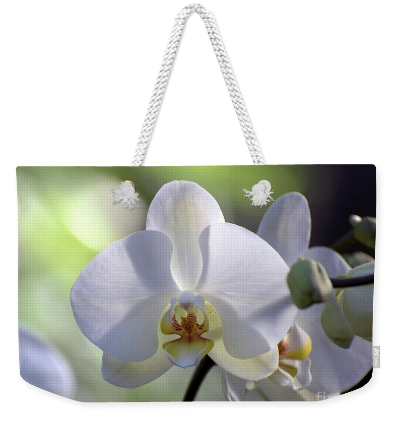 White Orchid Weekender Tote Bag featuring the photograph White Phalaenopsis Orchid 5 Of 8 by Terri Winkler