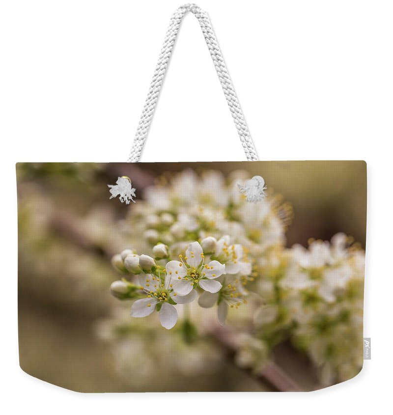 Plum Weekender Tote Bag featuring the photograph White Plum Blossom by Calazone's Flics