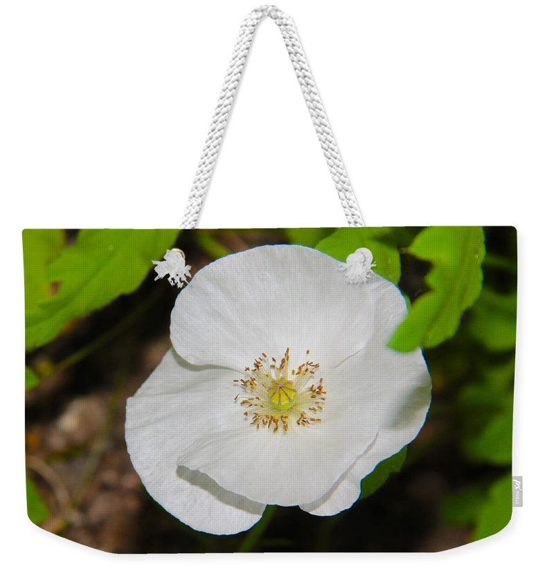 White Weekender Tote Bag featuring the photograph White Poppies by Sergey Lukashin