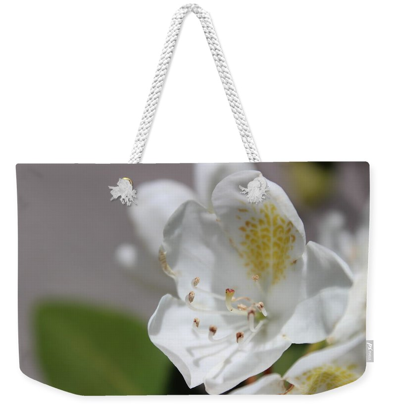 White Weekender Tote Bag featuring the photograph White Reaching Out by Alexis Ketner