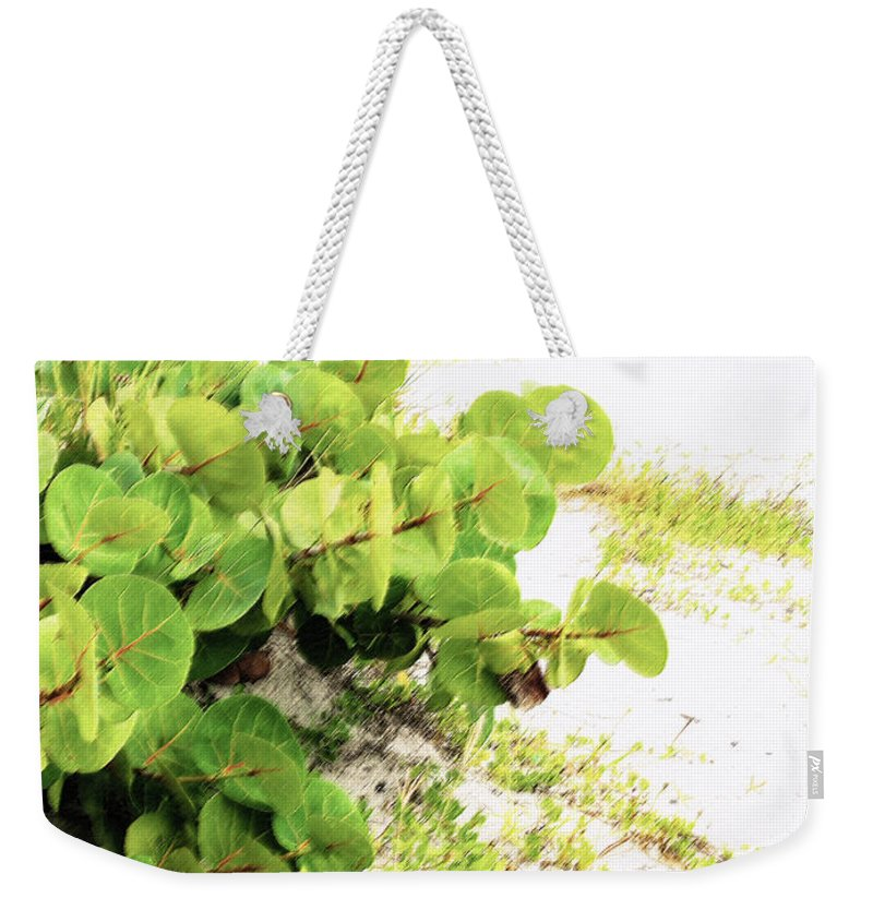 Florida Weekender Tote Bag featuring the photograph White Sand Beach by Ian MacDonald