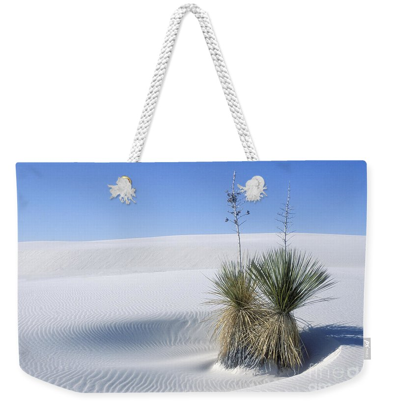 White Sands Weekender Tote Bag featuring the photograph White Sands Dune And Yuccas by Sandra Bronstein