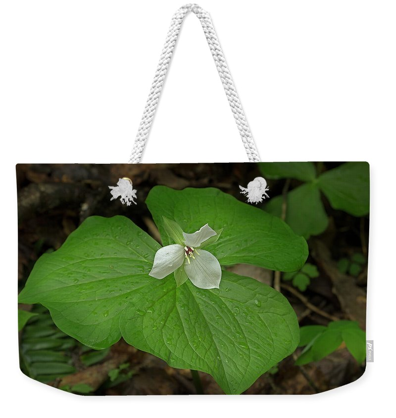 Sweet White Trillium Weekender Tote Bag featuring the photograph White Spring Trillium by Mike Eingle