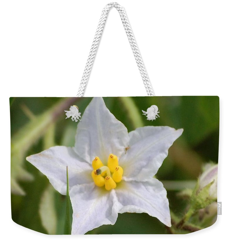 Digital Photo Weekender Tote Bag featuring the photograph White Star by David Lane