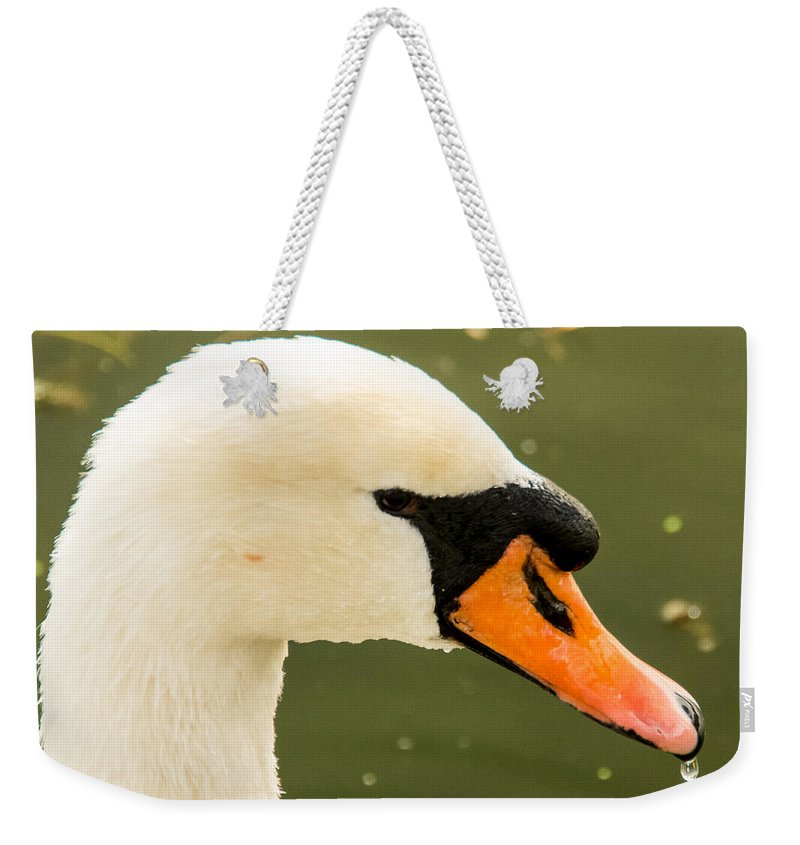 Bird Weekender Tote Bag featuring the photograph White Swan Profile by Jennifer Wick