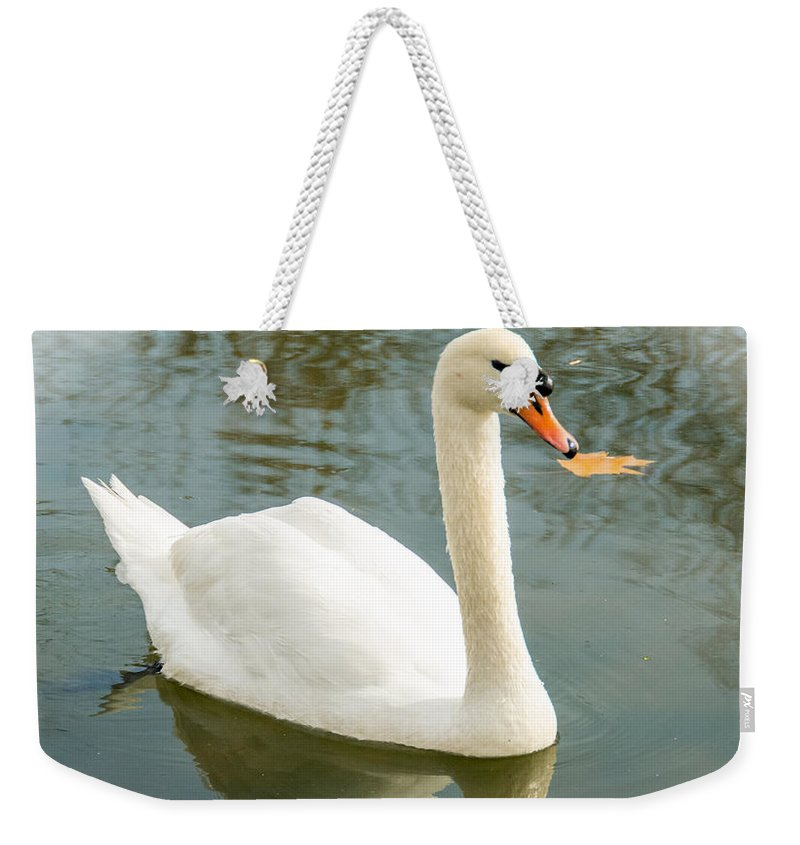 Bird Weekender Tote Bag featuring the photograph White Swan With Reflection by Jennifer Wick
