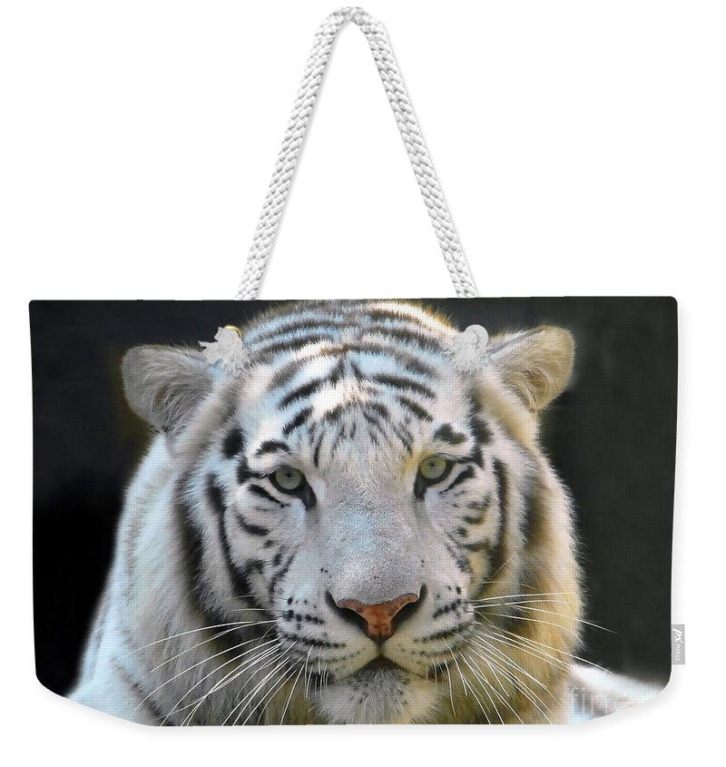 White Tiger Weekender Tote Bag featuring the photograph White Tiger by David Lee Thompson