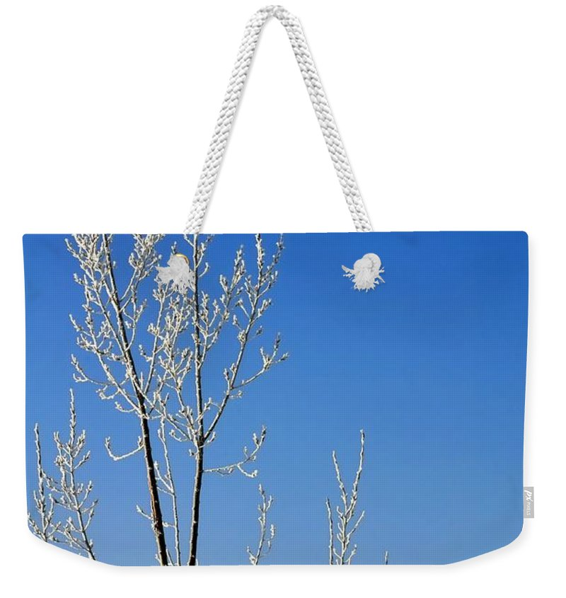 Season Weekender Tote Bag featuring the photograph White Tree Blue Sky by Jerry Sodorff