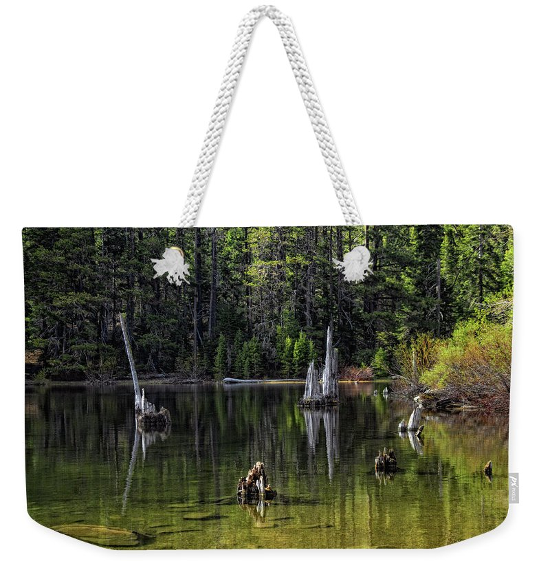 Tree Weekender Tote Bag featuring the photograph White Trees Of Gondor by Donna Blackhall