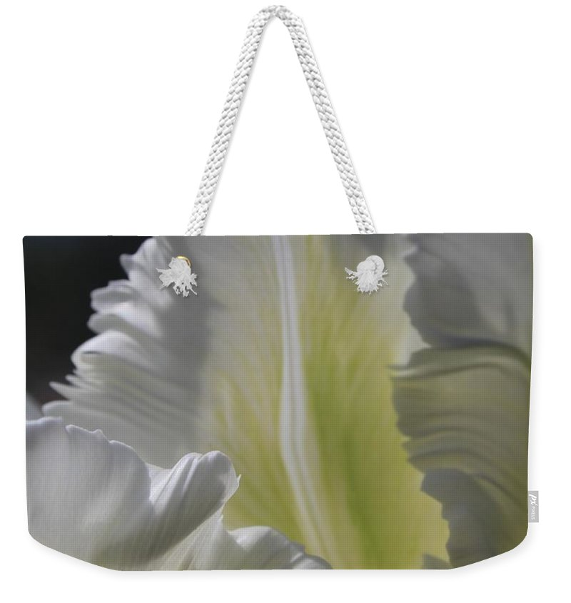 Tulip Weekender Tote Bag featuring the photograph White Tulip 2 by Mo Barton