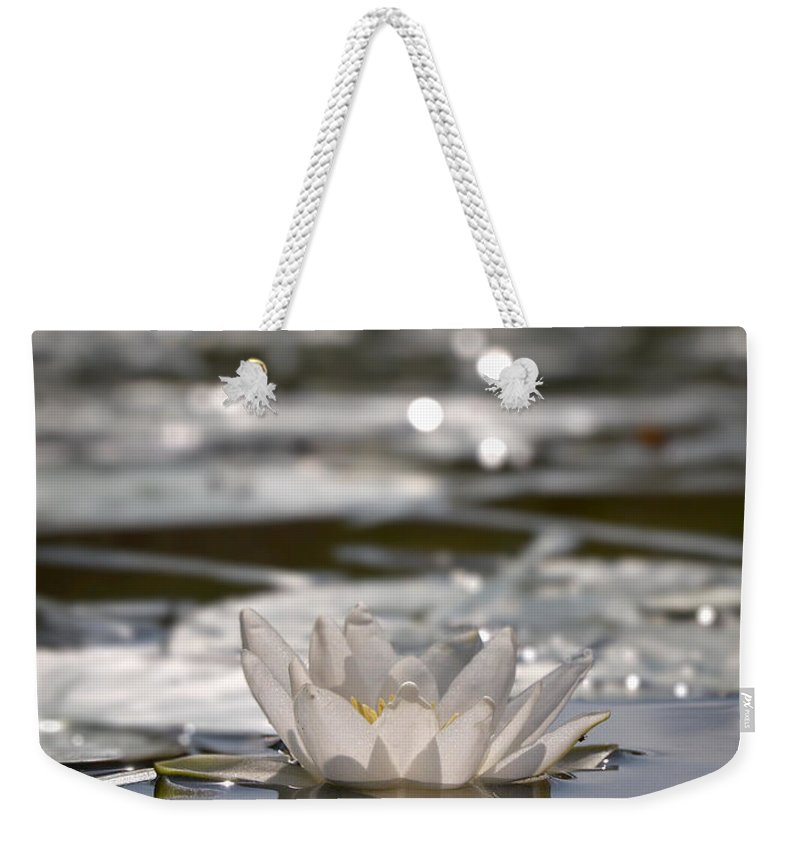 Lehtokukka Weekender Tote Bag featuring the photograph White Waterlily 3 by Jouko Lehto