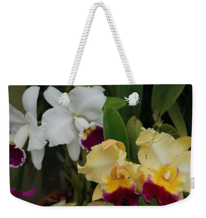 Macro Weekender Tote Bag featuring the photograph White Yellow Orchids by Rob Hans