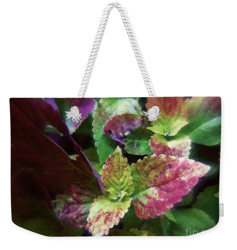 Coleus Weekender Tote Bag featuring the painting Who Needs Flowers by RC DeWinter