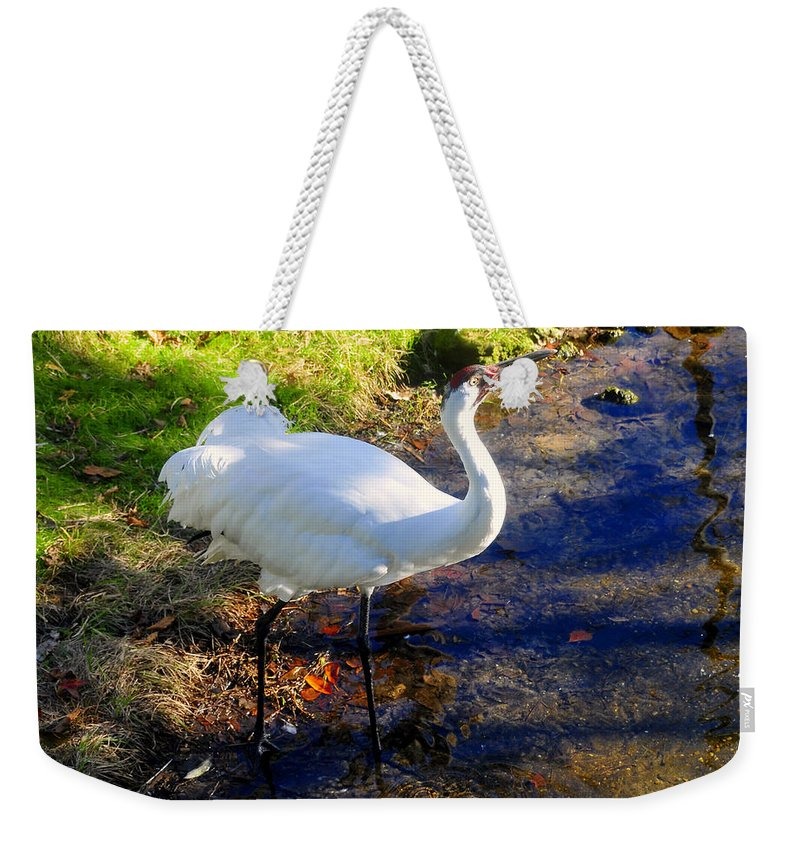 Whooping Crane Weekender Tote Bag featuring the photograph Whooping Crane by David Lee Thompson
