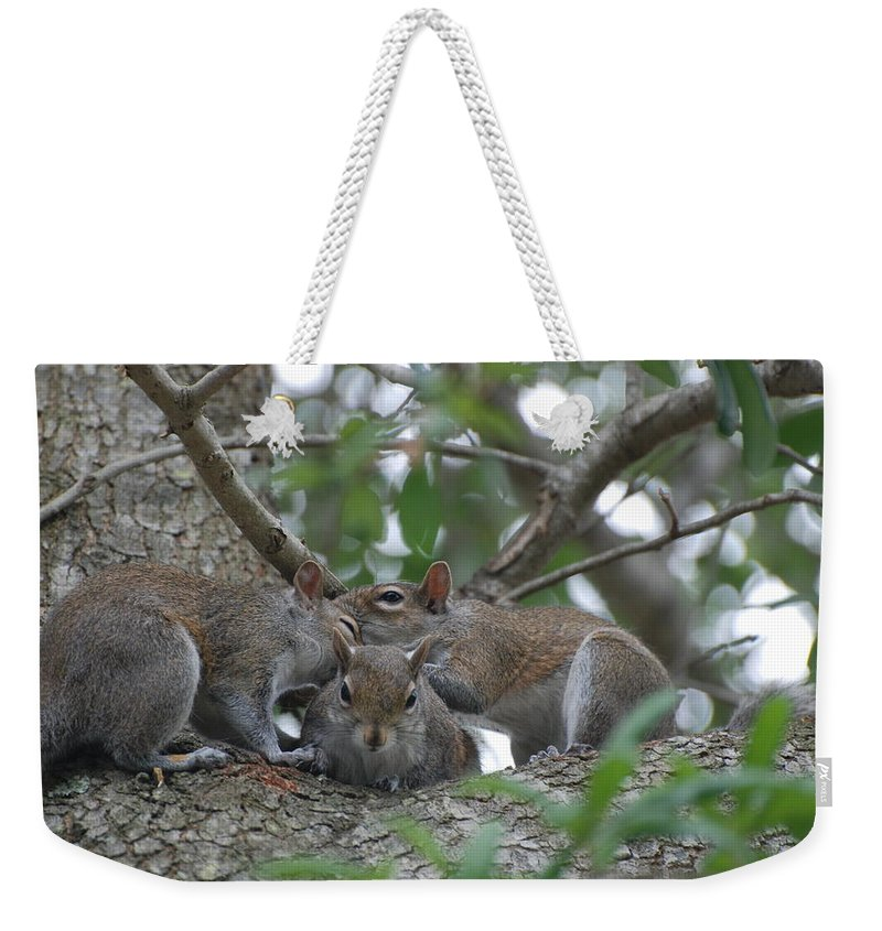 Squirrel Weekender Tote Bag featuring the photograph Why Me by Rob Hans