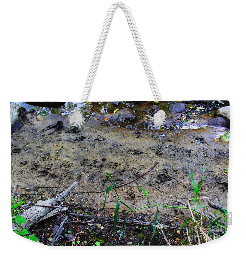 Animal Prints Weekender Tote Bag featuring the painting Wild Animal Prints by Corey Ford