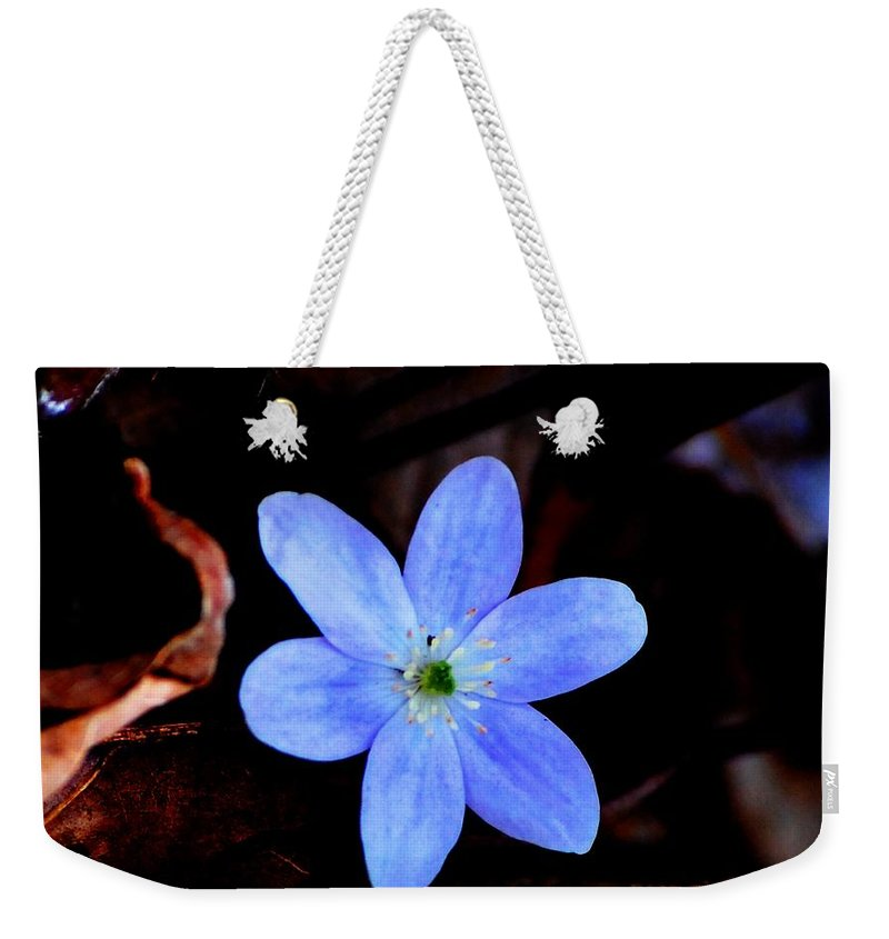 Digital Photo Weekender Tote Bag featuring the photograph Wild Blue by David Lane