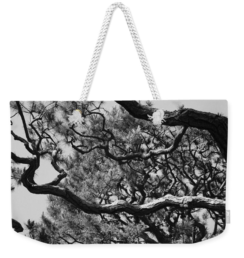 Wild Branches Weekender Tote Bag featuring the photograph Wild Branches by Carol Groenen