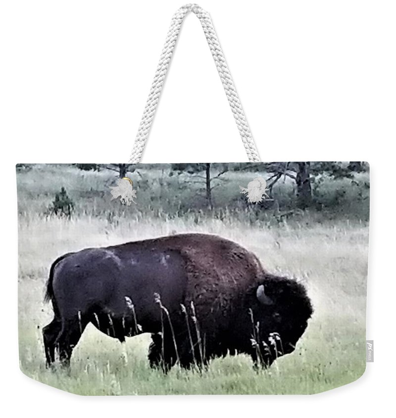 Beautiful Weekender Tote Bag featuring the photograph Wild Buffalo by Rob Hans