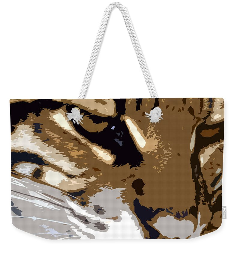 Wild Weekender Tote Bag featuring the painting Wild Cat by David Lee Thompson