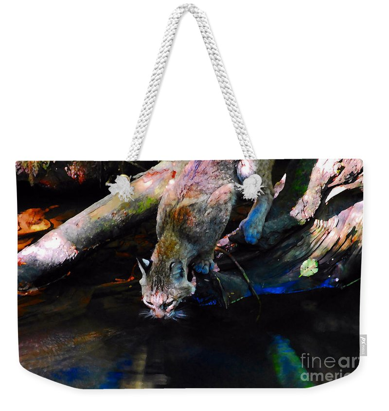Cat.wild Weekender Tote Bag featuring the photograph Wild Cat Drinking by David Lee Thompson