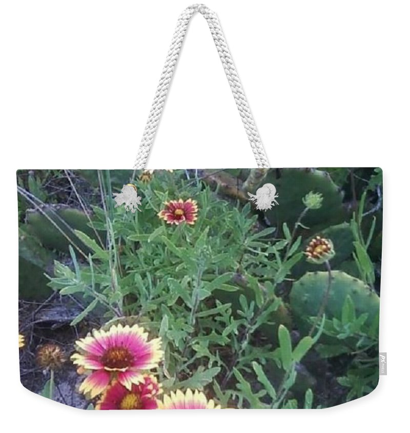 Catus Weekender Tote Bag featuring the photograph Wild Catus by Michelle Powell