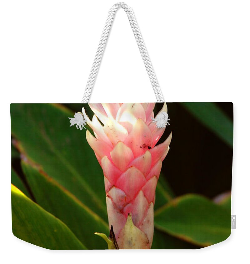Wild Ginger Weekender Tote Bag featuring the photograph Wild Ginger II by Susanne Van Hulst