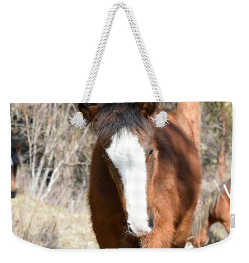 Wild Weekender Tote Bag featuring the photograph Wild Hair by Out West Originals