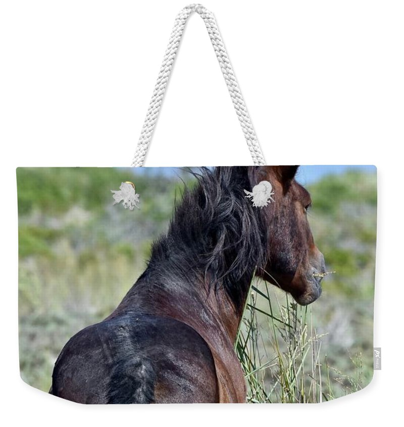 Wild Mustang Weekender Tote Bag featuring the photograph Wild Horse Of Assteague Island by Jeramey Lende