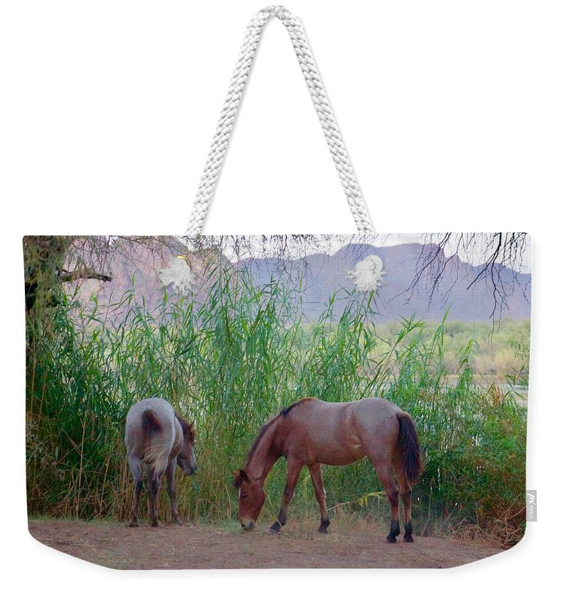 Wild Horses Weekender Tote Bag featuring the photograph Wild Horses At Twilight by Barbara Zahno