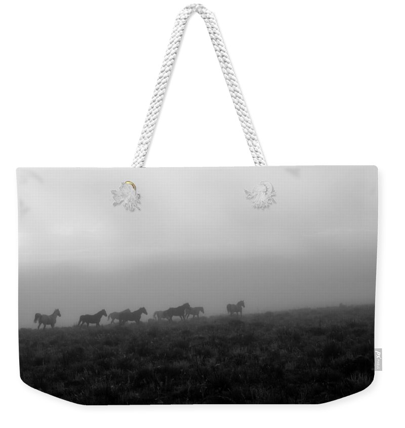 Horses Weekender Tote Bag featuring the photograph Wild Horses by Branden Kruis