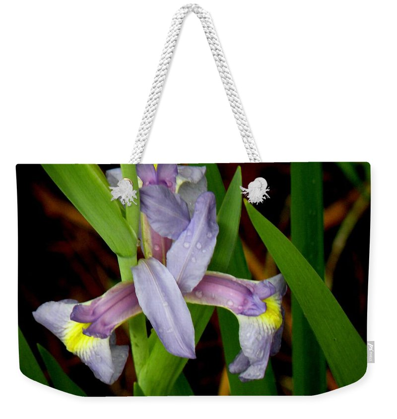 Flowers Weekender Tote Bag featuring the photograph Wild Iris by Rosalie Scanlon