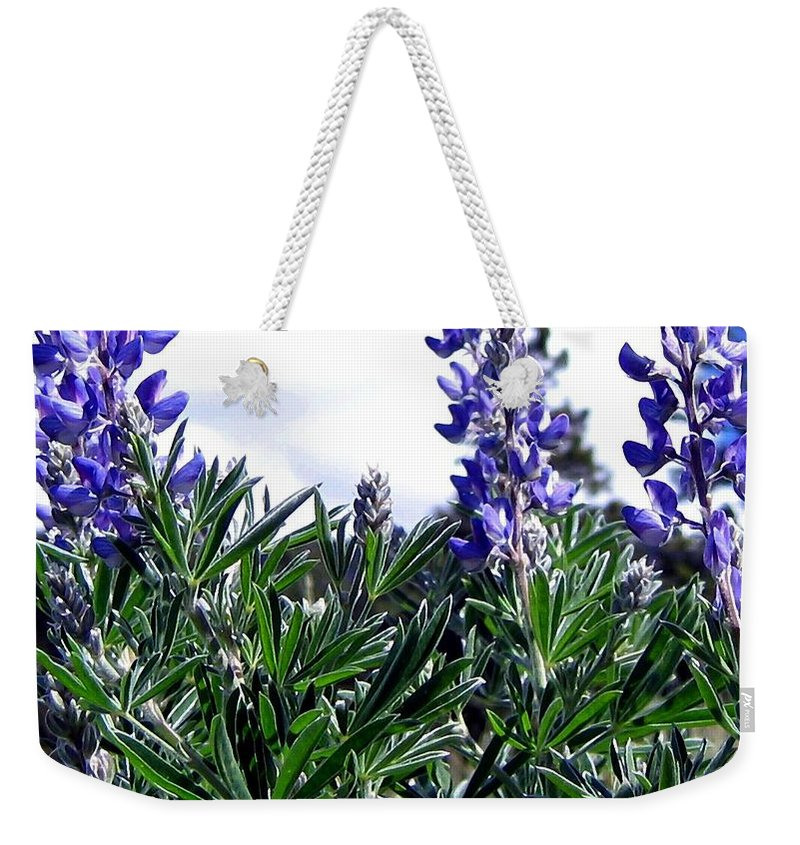 Lupines Weekender Tote Bag featuring the photograph Wild Lupines by Will Borden
